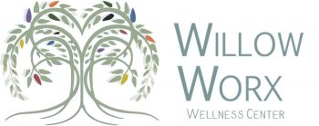Willow_Worx_Logo_Side_Text_White_WW